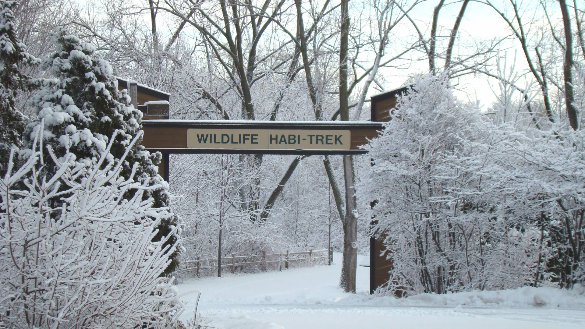 Greater Green Bay has plenty of parks and trails to get outdoors and enjoy the winter wonderland. Strap on your snowshoes and head out for a hike at Bay Beach Wildlife Sanctuary.