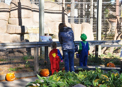 Zoo Boo at National Railroad Museum
